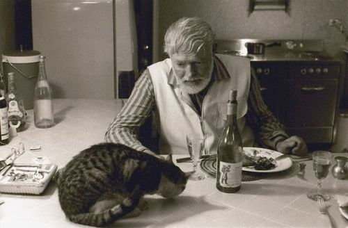 Hemmingway and his Cat who Inherited Everything
