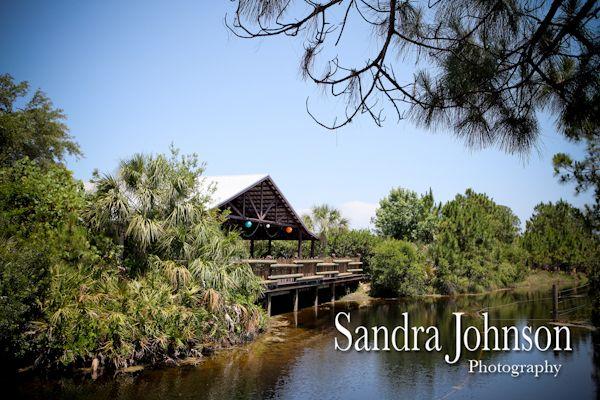 Best Brevard Zoo Wedding Photographer – Sandra Johnson (SJFoto.com)    Nyami Nya…
