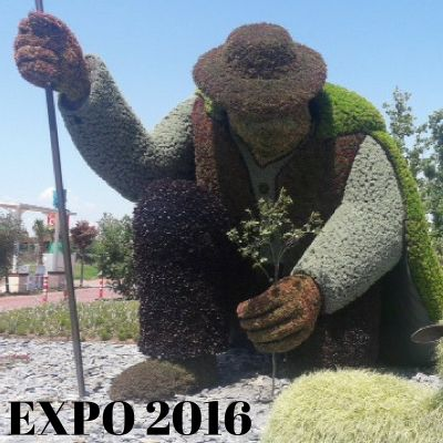 "Must see: Antalya Expo 2016 ""Bloemen"