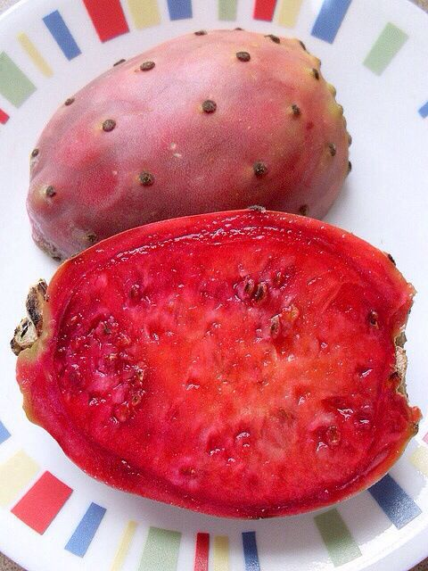 Inside the beautiful prickly pear fruit.