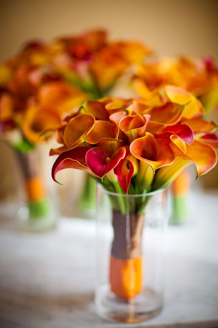 cala lilies...gorgeous!