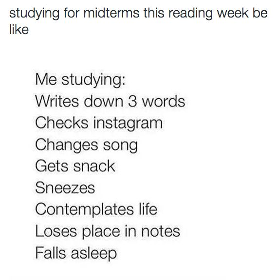 Because there are so many other important things you also need to do. | 24 Times The Internet Perfectly Described Midterms Week