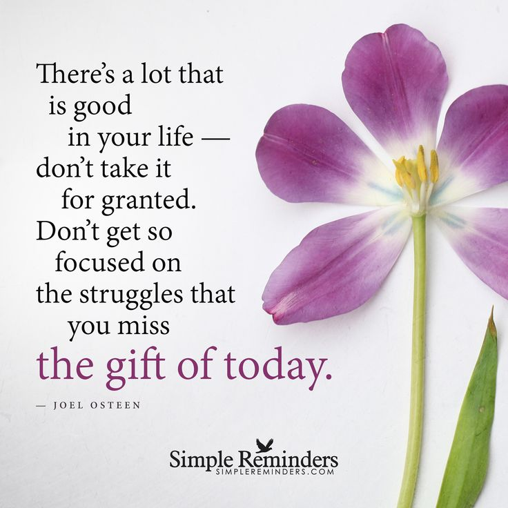 There's a lot that is good in your life — don't take it for granted. Don't get so focused on the struggles that you miss the gift of today. — Joel Osteen