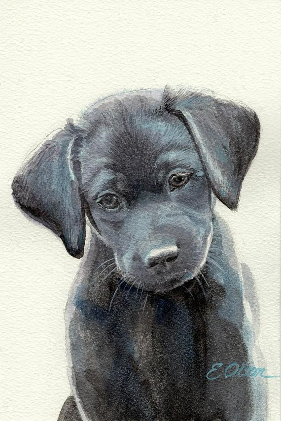 Original Watercolor Painting Watercolor Black Labrador Retriever