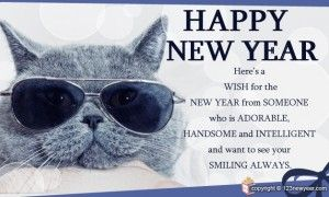 Funny New Year Messages - Messages, Wordings and Gift Ideas