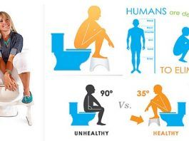 How Does The Toilet Bowl Destroy Your Health?