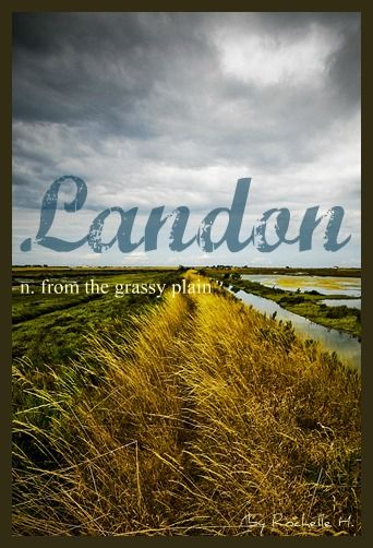 Baby Boy or Girl Name: Landon. Meaning: From the Grassy Plain. Origin: English. http://www.pinterest.com/vintagedaydream/baby-names/
