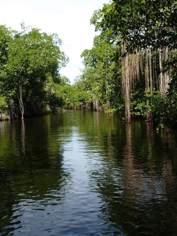 Foto Black River, Oost Jamaica Door: sitahouwer