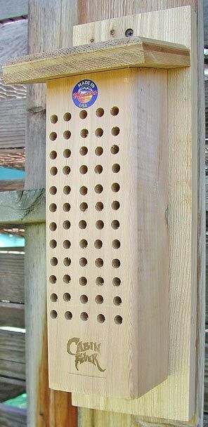You can buy a premade orchard mason bee house through mail-order sites such as Planet Natural at www.planetnatural.com or 1-800-289-6656.