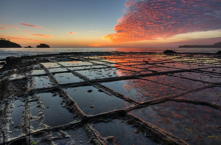 Amazing symmetry in nature formed when rock is fractured by regional stress, then eroded by wave action. Salt crystals can form along the cracks, increasing the rock alteration. This is in Tasmania. The photo makes me want to jump on a plane.: Tasmania, Nature, Australia, Tessellated Pavement, Places, Landscape, Natural
