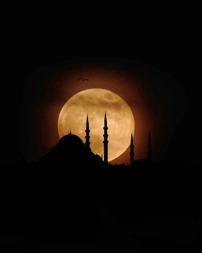 *full moon