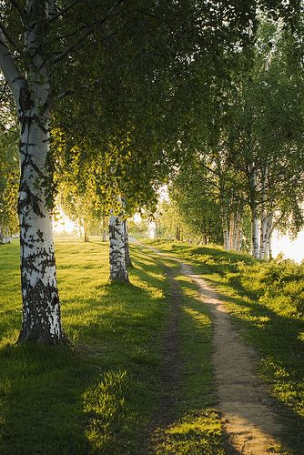Caminhos... Finland