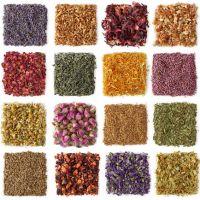 El simple hecho de añadir hierbas a tus comidas es una manera fácil y efectiva de mejorar el sabor de tu comida y su valor nutricional sin tener que añadir más calorías. Con tantos sabores distinto…