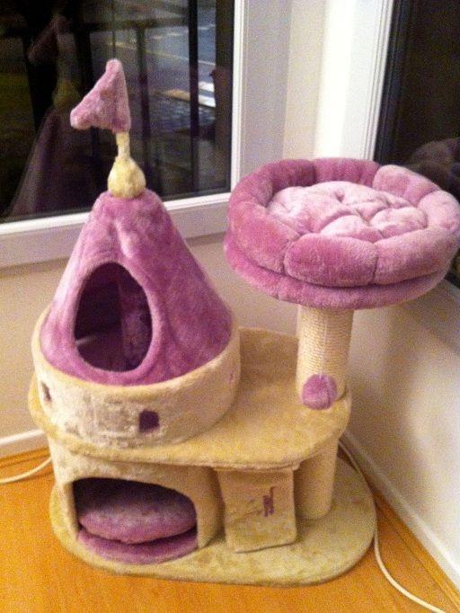 Mon chat a une vie de château : http://www.menagere-trentenaire.fr/2013/11/05/chateau-chat