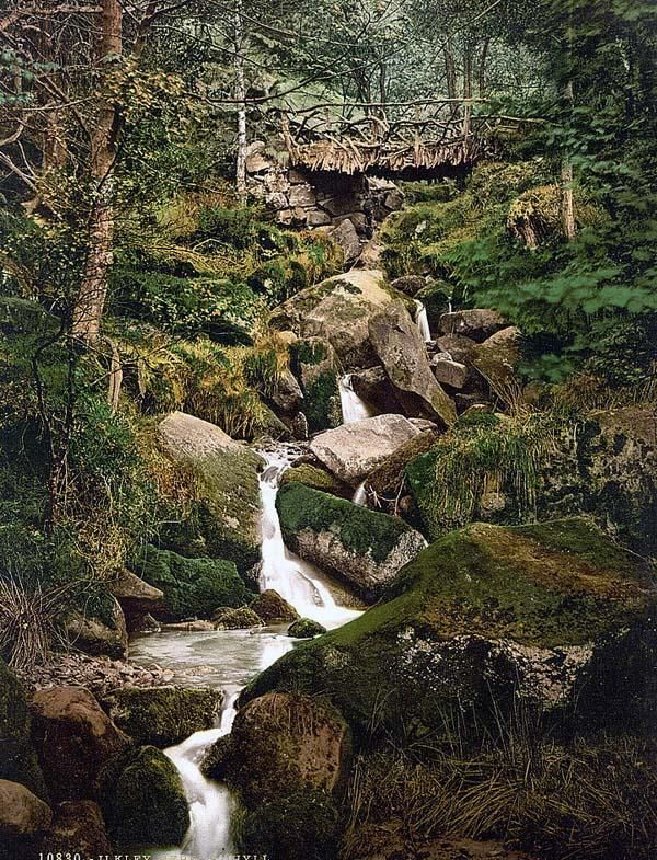 Hebers Ghyll, my favourite weekend stroll with Guy and the children, Ilkley, England