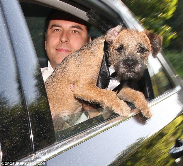 It's a dog's life: David Walliams and and wife Lara Stone took their pet pooch to Sir Elton John's White Tie and Tiara ball