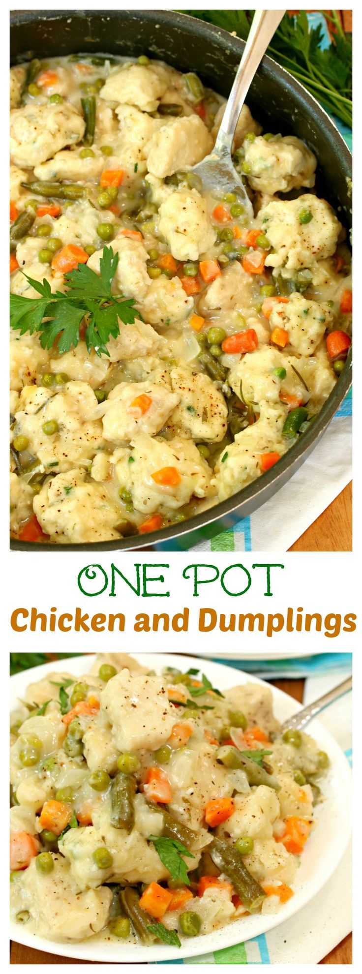 One Pot Chicken and Dumplings: Savory chicken and dumplings smothered in a creamy sauce with your favorite vegetables, all made in one pot!