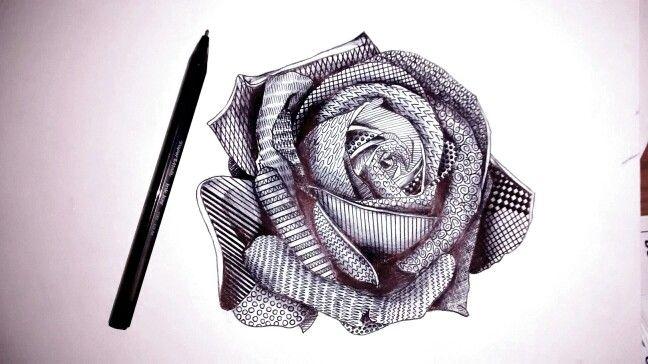 Flower art, Bridgette Riley style rose, patterned, monochrome, pen and ink style Drawn in Biro by Karolina Czerwinska