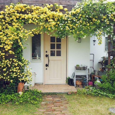 moki-productさんの、玄関/入り口,ナチュラル,ランタン,カフェ風,玄関ドア,庭の草花,玄関前,アメブロやってます♪,玄関ガーデン,庭の植物たち,モッコウバラのアーチ,植物のある生活,インスタやってます!,シャビーが好き♡,子供と暮らす,植物のある暮らし,ベストショット,のお部屋写真