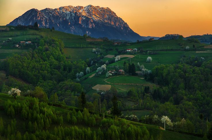 Evening near the mountains by Cristi Jora on 500px  #Carpati #Holbav #Romania