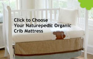 Real facts you must know about the toxicity of a crib mattress! Learn how to choose the best and safest organic crib mattress.