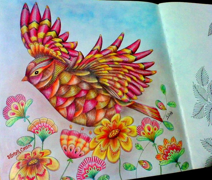 589 Best Images About Animal Kingdom Colouring Book On