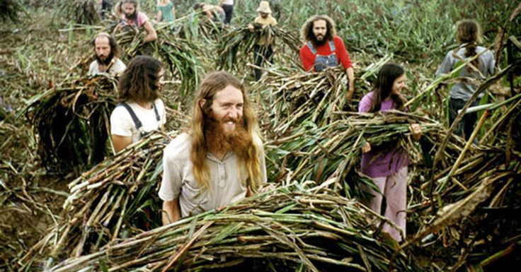 4 Modern Hippies Communes - Would love to live in one of these places!!! via  www.hippybloggers.com