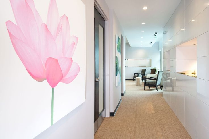 Lotus+Dental+Hallway