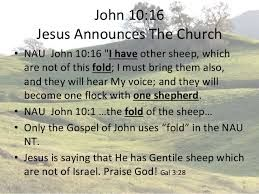 Image result for john chapter 10:16 other sheep
