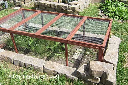 This is for tortoises, but the idea of cement blocks around the outside should work for rabbit enclosure, too.