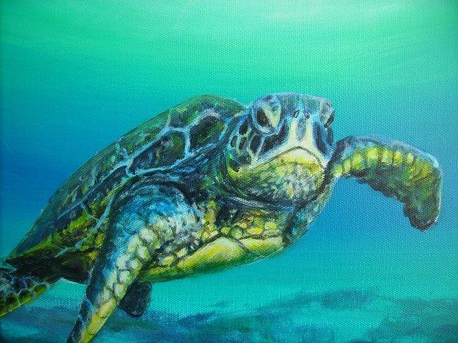 acrylic paintings of sea turtles | sea turtle acrylic Paintings | turtle close up Art Prints by jennifer ...