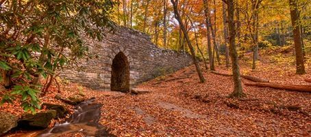 20 Places in South Carolina you have to see! 12) Poinsett Bridge near Traveler's Rest, SC: The oldest bridge in South Carolina. // yeahTHATgreenville
