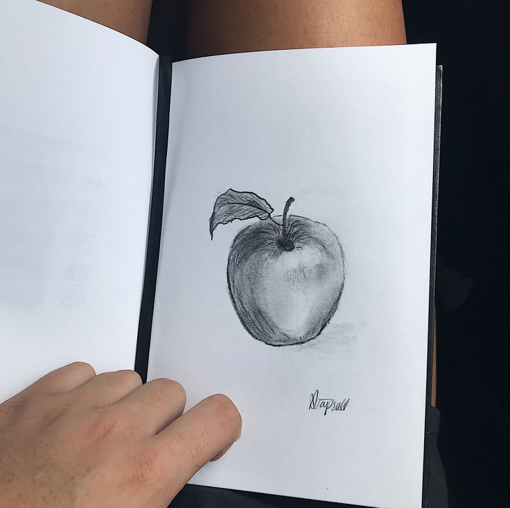 Sketch of an apple #applesketch #apple #sketching #sketches #creative #apples #sketch