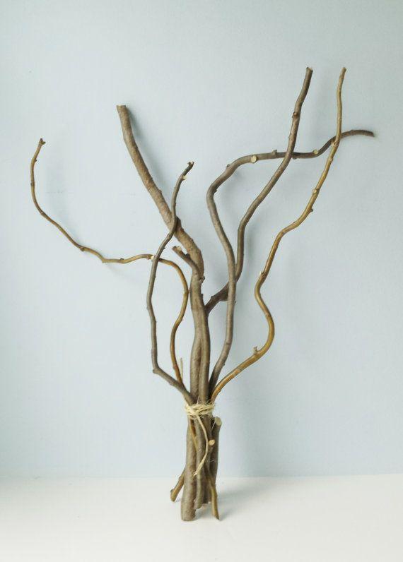 Paquete de palos de sauce rizado de ramas de sauce de ramas