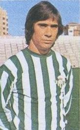 Julio Cardeñosa, Real Betis