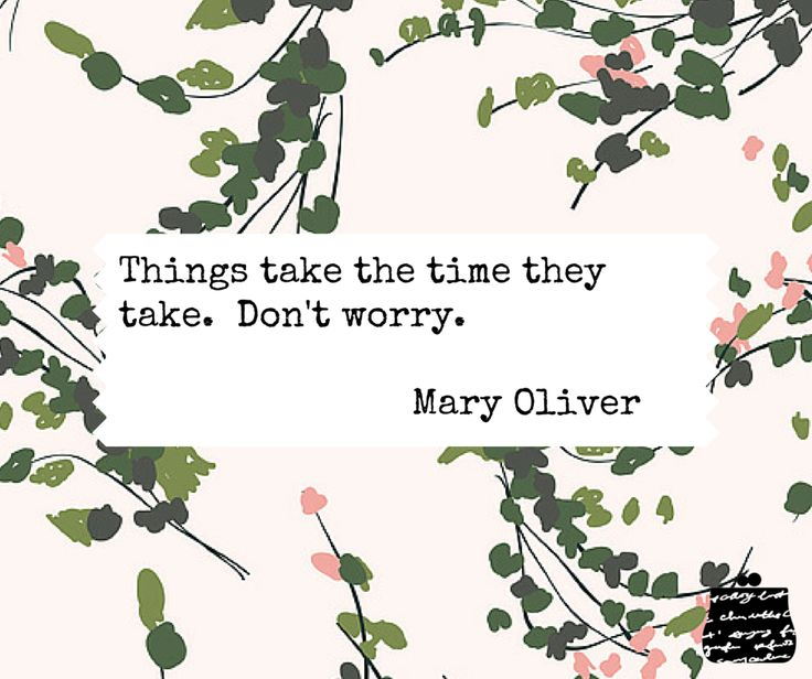 Things take the time they take.  Don't worry.  - Mary Oliver - #quotes #wisdom #inspiration #poetry #patience #maryoliver