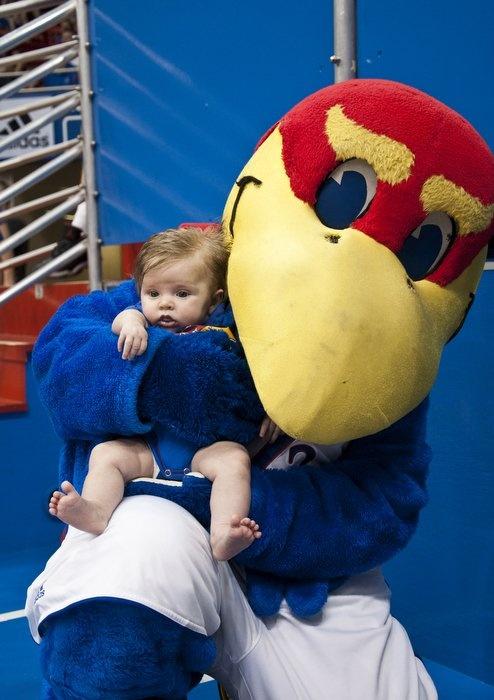 Baby Jay and junior Jayhawk :)