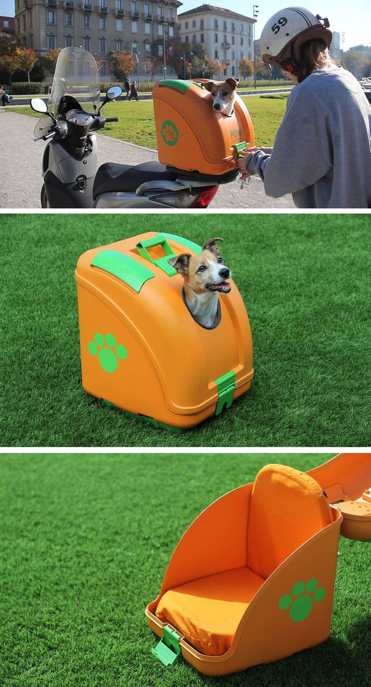 This hardshell pet carrier has been designed to transport