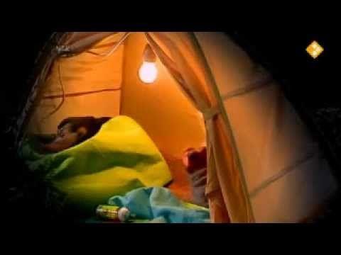 koekeloere: zoem, zoem, zoem (thema kriebelbeestjes, dieren)
