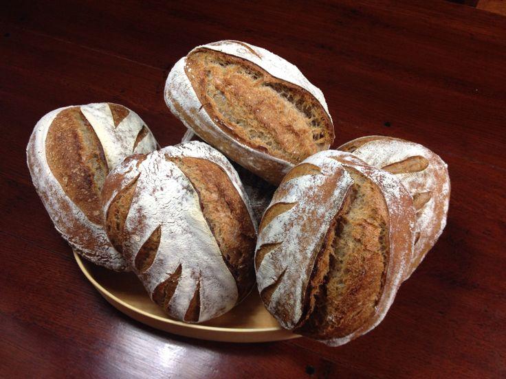 #Raimugido wheat sourdough with barley.