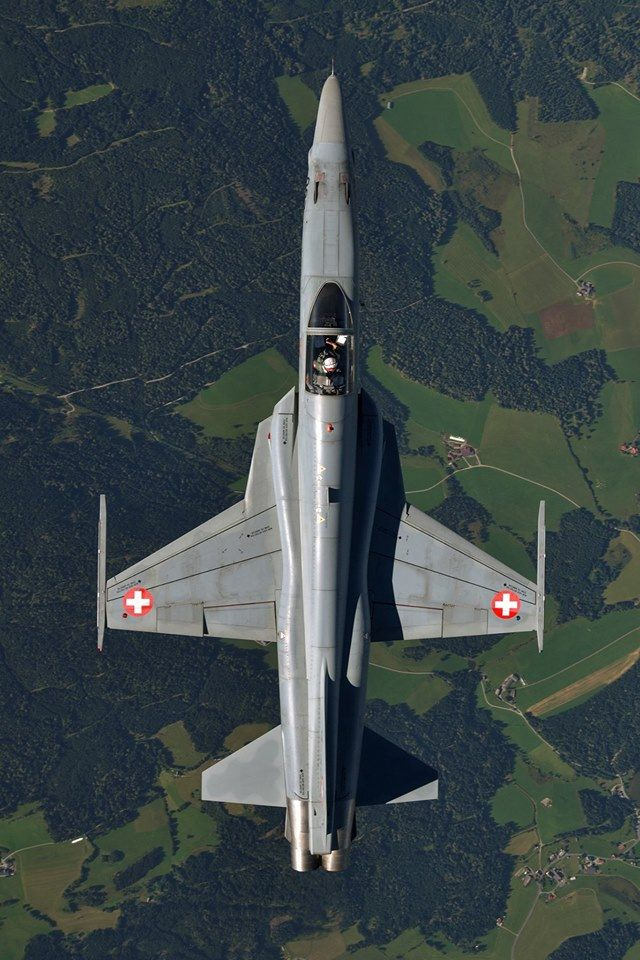 An air-to-air top side view of a Swiss Air Force F-5E Tiger II flying over the Austrian Countryside.