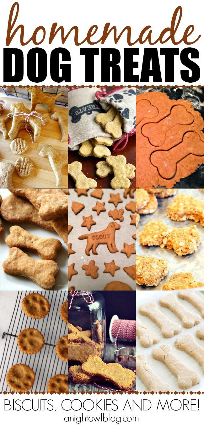 Check out this fun list of homemade dog treats! Perfect for the pup in your life!
