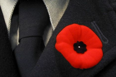 Remembrance Day: During the month of November, we wear poppies to honour those who have made sacrifices in times of war. On November 11th specifically, we get together at public ceremonies to pay our respects. For ceremony details visit: http://toronto.about.com/od/eventsattractions/tp/remembrancedayceremonies.htm