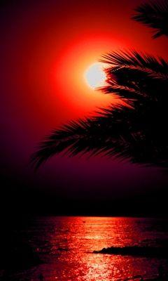 ✯ Amazing Sunset   http://PhilosBooks.com