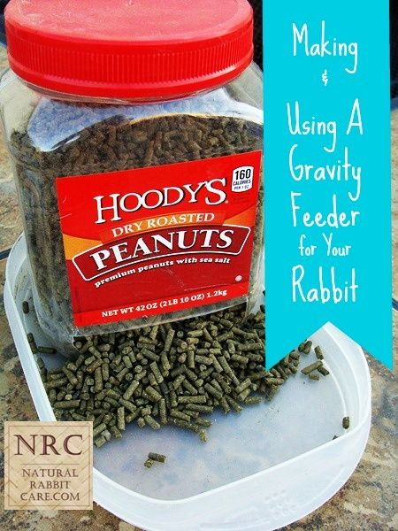 Making & Using A Gravity Feeder for Your Rabbit - Natural Rabbit Care