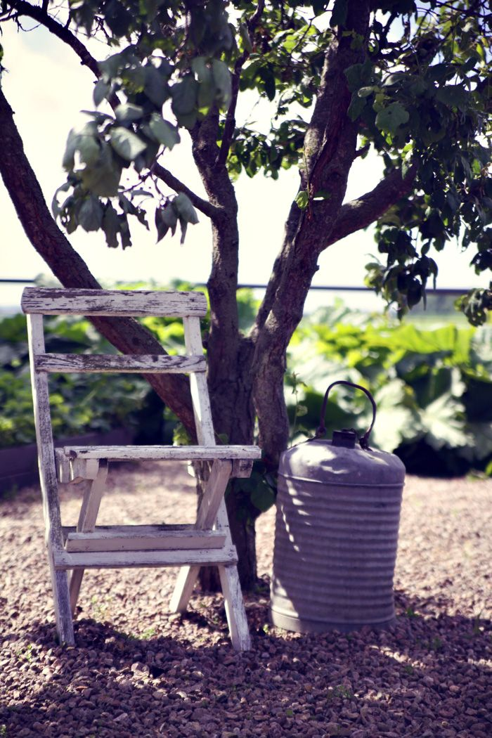 Köksträdgården | Helt enkelt