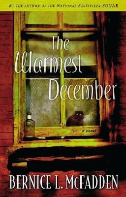 7 best buy ebooks online from ebook title at reasonable rates images click for more detail about the warmest december by bernice l mcfadden fandeluxe Image collections