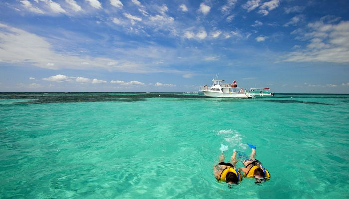 John Pennekamp State Park Snorkeling Tour  $30 for adults, $25 for Kids.  Image from http://www.pennekamppark.com/photos/