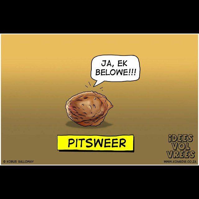 Pitsweer #pitsweer #ivv #afrikaans #snaaks #idees_vol_vrees #grappe