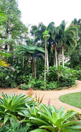 Book your tickets online for Cairns Botanic Gardens, Cairns: See 1,527 reviews, articles, and 514 photos of Cairns Botanic Gardens, ranked No.4 on TripAdvisor among 110 attractions in Cairns.